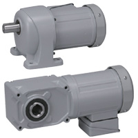 Brother Gearmotors Threee-Phase AC Gear Motors