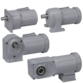 Brother Gearmotors Three-Phase AC Motors & Gear Motors