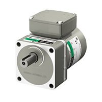 KIIS Series AC Motors & Gear Motors