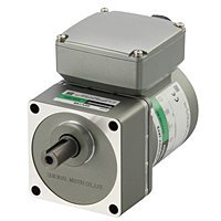 reversible ac motors
