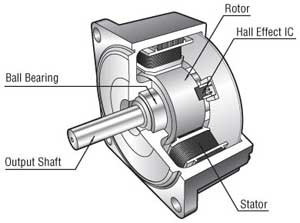 Brushless DC Motor Structure