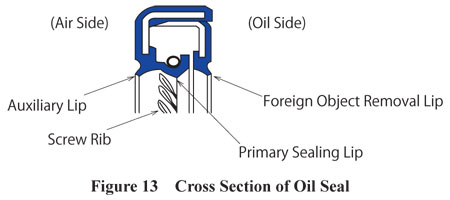Cross Section of Oil Seal
