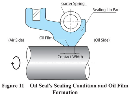 Oil Seal Sealing Formation and Oil Film Formation