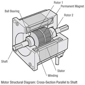 Stepper Motor Structural Diagram